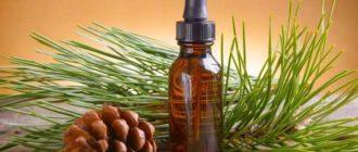 Как выбрать и хранить пихтовое масло